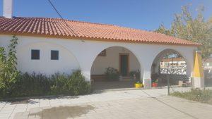 barracheia3 (1)